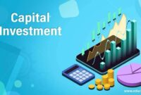 Capital Investment and the Economy